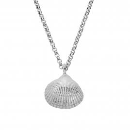 Silver Maxi Shell Necklace