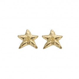 Gold Mini Star Stud Earrings