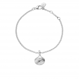 Silver Mini Shell Chain Bracelet