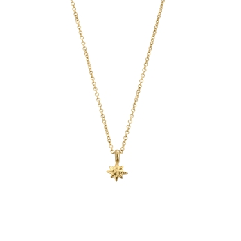 Gold Baby North Star Necklace