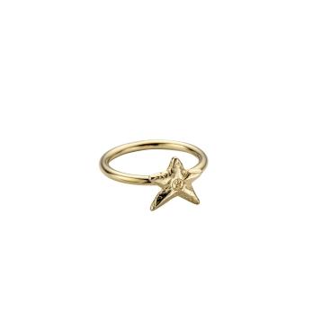 Gold Love Struck Mini Star Ring