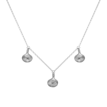 Silver Three Shell Necklace