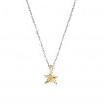 Silver & Gold Mini Star Necklace