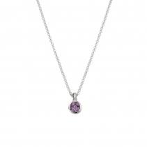Silver Amethyst Baby Treasure Necklace
