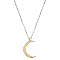 Silver & Gold Large Crescent Moon Necklace
