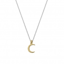 Silver & Gold Mini Crescent Moon Necklace