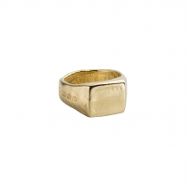 Gold Square Signet Ring