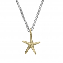 Silver & Gold Maxi Starfish Necklace