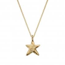 Gold Midi Star Necklace