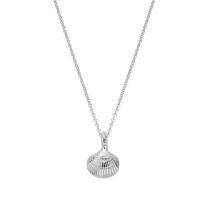 Silver Mini Shell Necklace