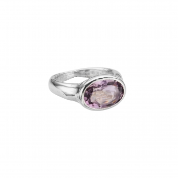 Silver Amethyst Treasure Ring