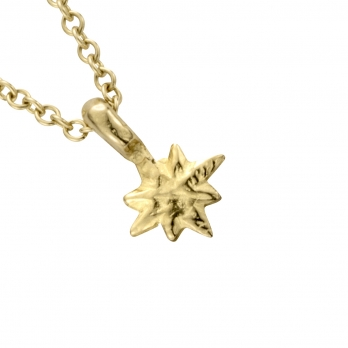 Gold Baby North Star Necklace detailed