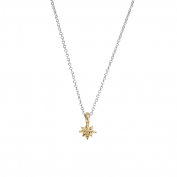 Silver & Gold Baby North Star Necklace