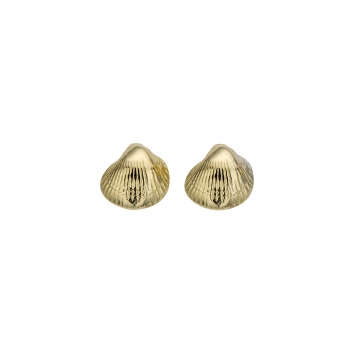 Gold Baby Shell Stud Earrings