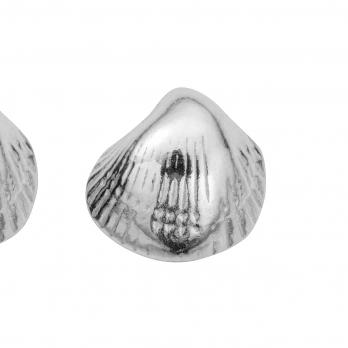 Silver Baby Shell Stud Earrings detailed