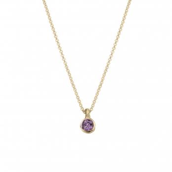Gold Amethyst Baby Treasure Necklace