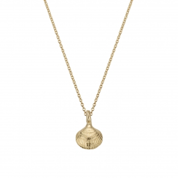 Gold Mini Shell Necklace