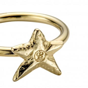 Gold Love Struck Mini Star Ring detailed