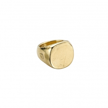 Gold Pebble Signet Ring