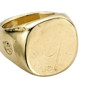Gold Pebble Signet Ring detailed