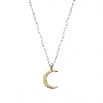 Silver & Gold Medium Crescent Moon Necklace