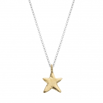 Silver & Gold Midi Star Necklace