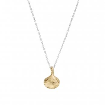 Silver & Gold Mini Shell Necklace