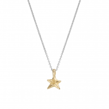Silver & Gold Mini Star Necklace