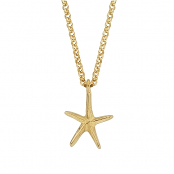 Gold Maxi Starfish Necklace