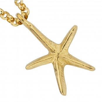 Gold Maxi Starfish Necklace detailed