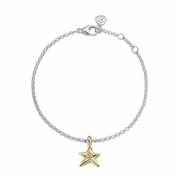 Silver & Gold Mini Star Chain Bracelet