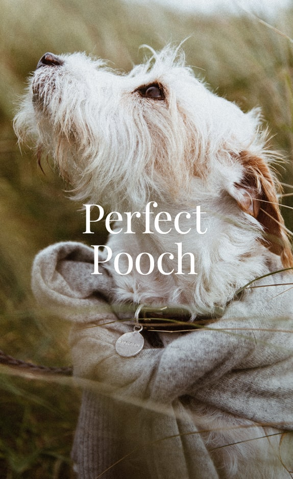 Perfect Pooch, Pet Gifts